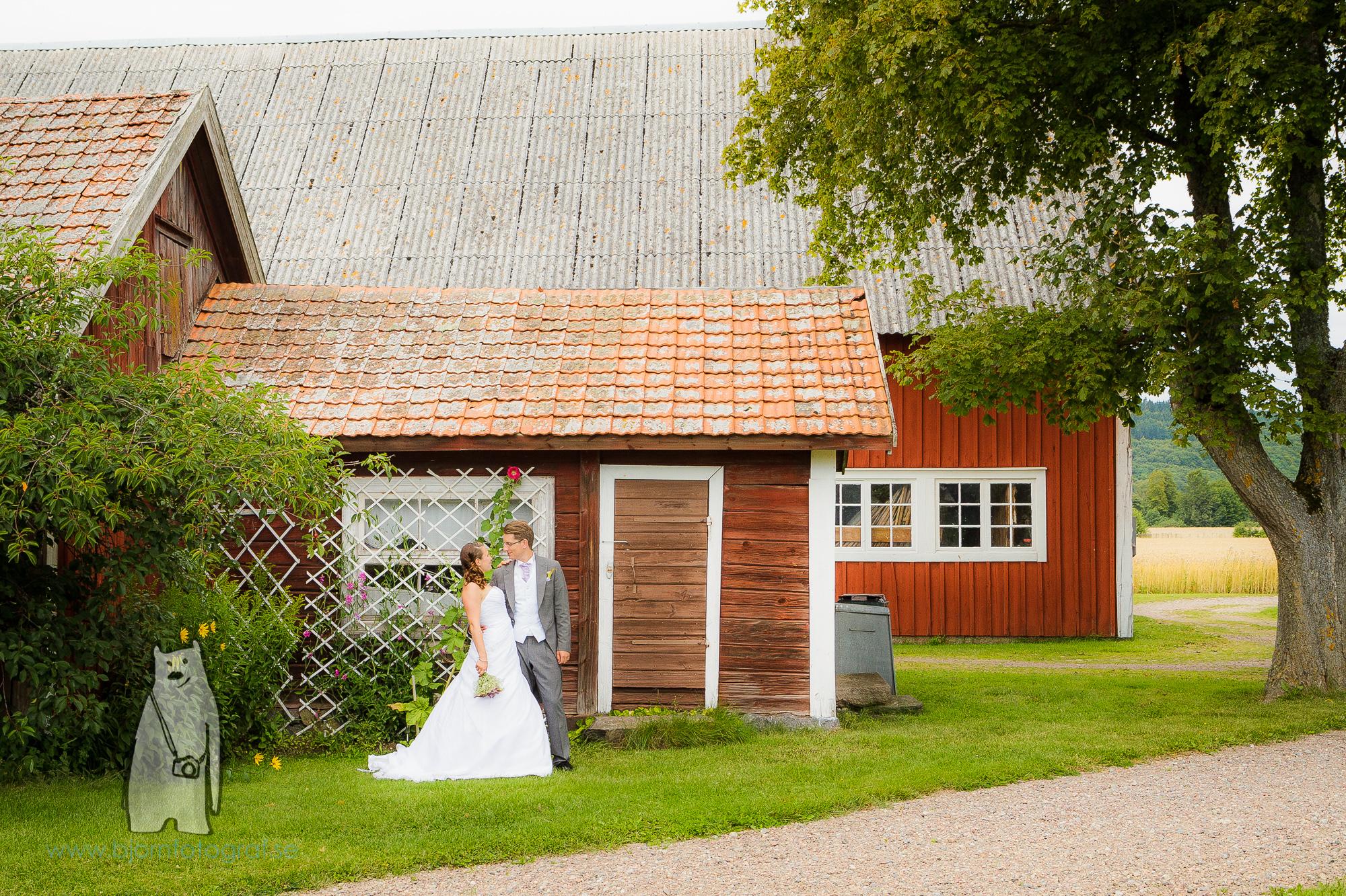 bjornfotograf.se-4885