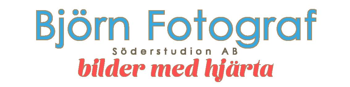 Logo  Björn Fotograf Transparent utan Björn