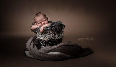 Nyfödd hos fotografen